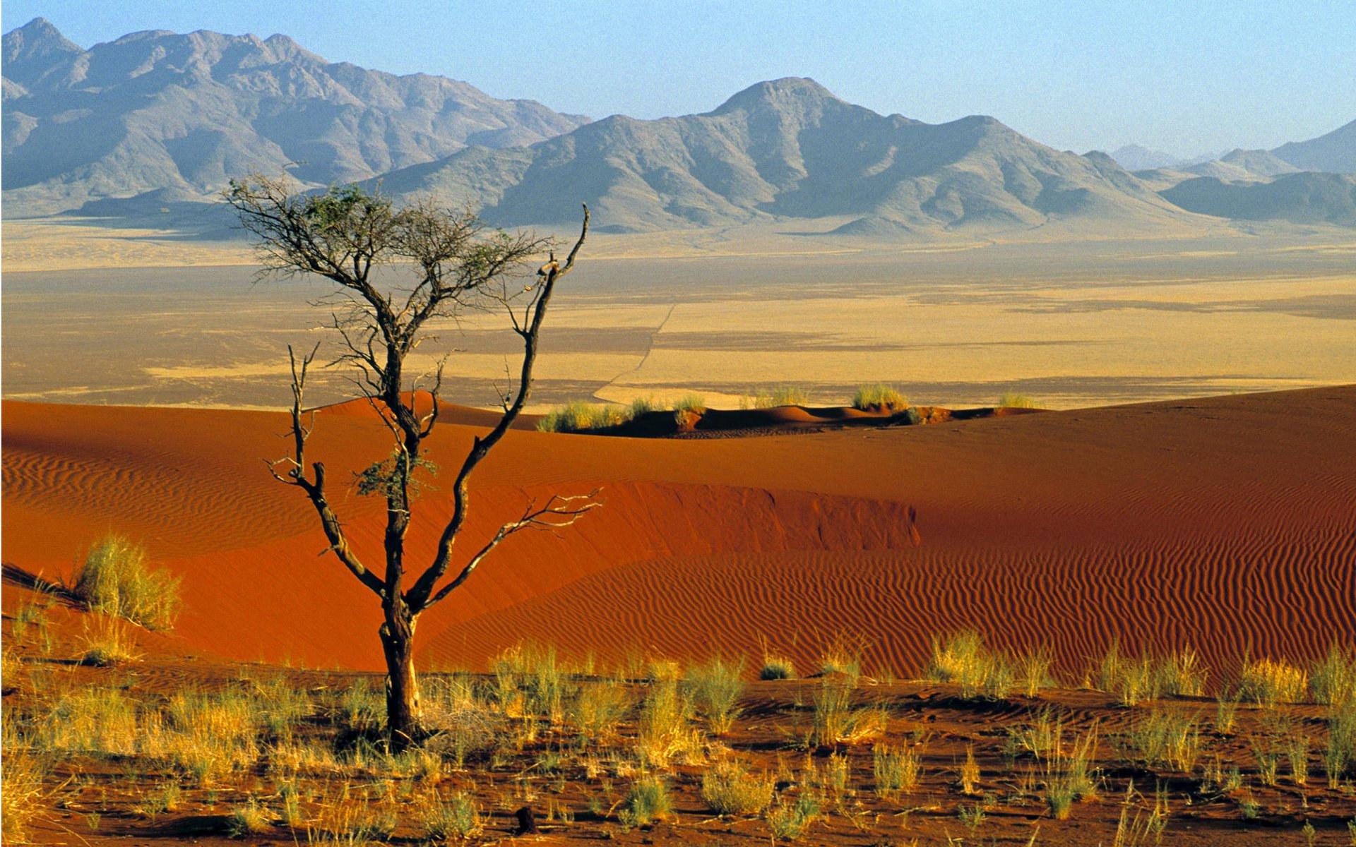 NamibRand Nature Reserve met AV Tours